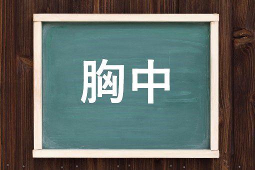 胸中の読み方と意味、「きょうちゅう」と「きゅうちゅう」正しいのは?